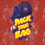 India Desire : Redbull Game Offer : Play Pack Your Bag Game And Get Free 2 Redbull Red Edition Energy Drink