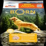 India Desire : Buy Bornfree Adult Dog Food , 1.2kg At Rs 48 From Paytmmall